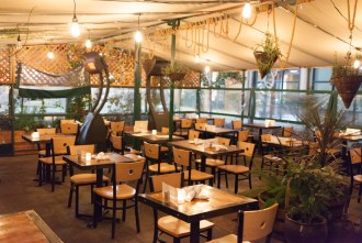 outdoor patio at Fig Tree Cafe (Liberty Station)