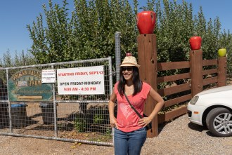 Volcan Valley Apple Farm fence with apples