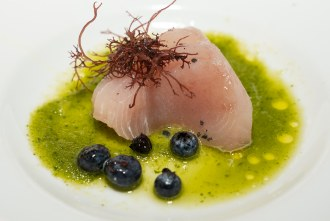 Wahoo with Blueberry and Ogo at Wrench and Rodent in Oceanside