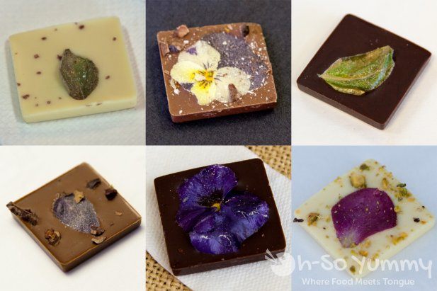 Escondido Chocolate Festival 2014 - Coco Savvy Chocolate collection