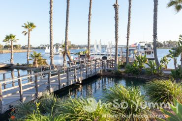 marina view at Tidal restaurant in Mission Bay of San Diego