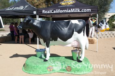 The Wedge Escondido 2014 - sponsored by Real California Milk