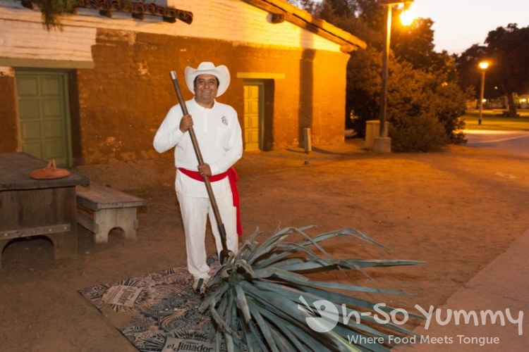Tequila Trail 2013 - Agave Plant demonstration