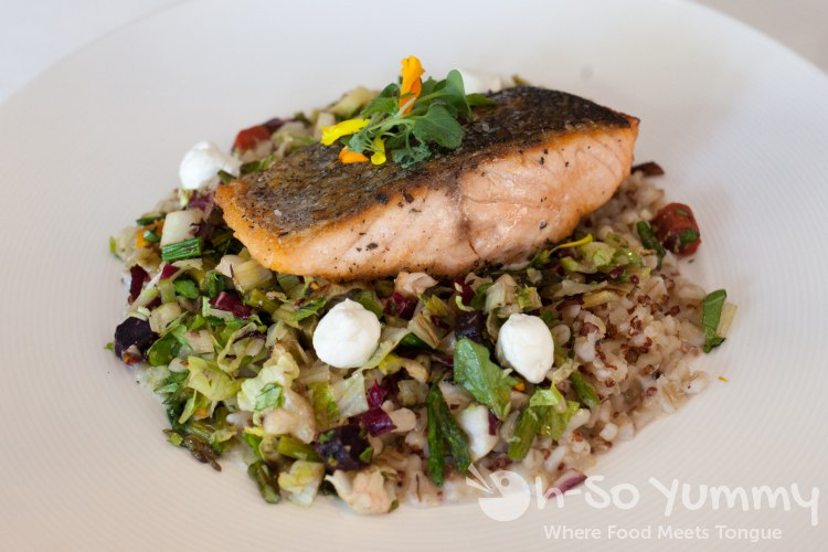 panseared salmon, barley and quinoa at BiCE Ristorante in downtown San Diego