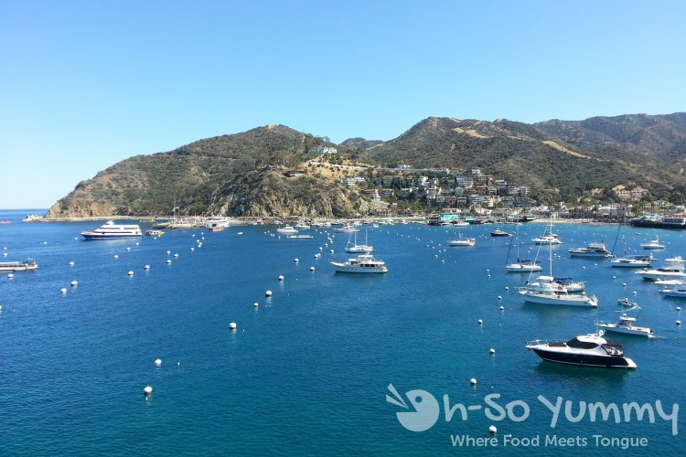 beautiful view from Avalon on Catalina Island