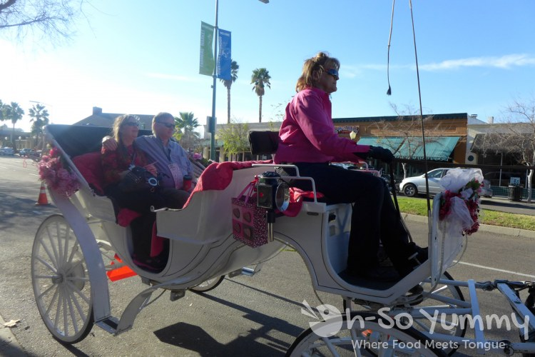Escondido Chocolate Festival 2014 - Horse and Carriage Ride
