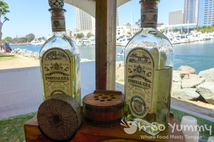 fortaleza by the ocean at latin food fest