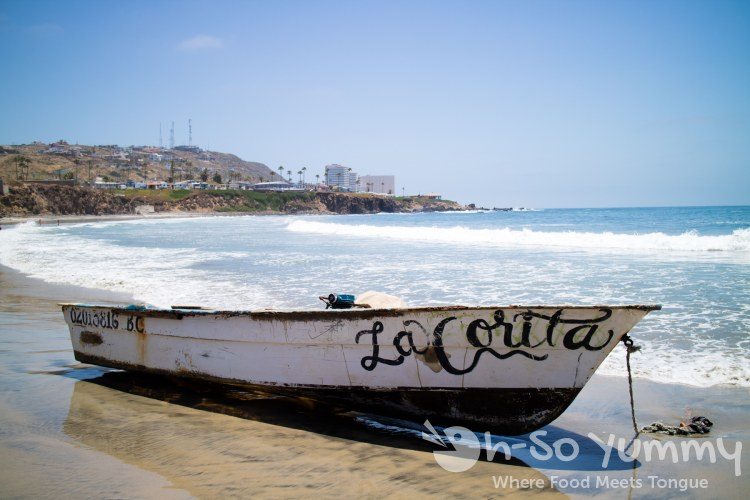 fishing boat on the beach of the fishing village of Popotla, B.C., Mexico