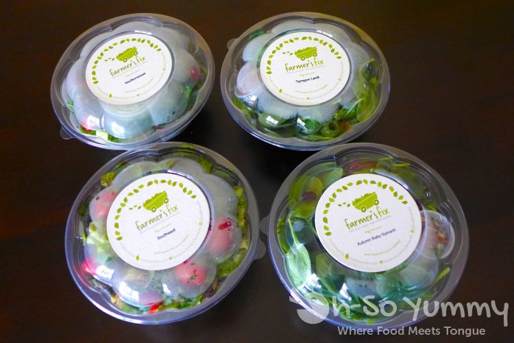 Farmer's Fix salads chilled in the bag