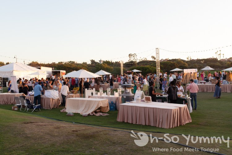 Food Wine and Jazz at the St Regis Monarch Beach