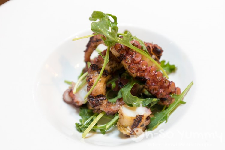 Grilled Octopus at Terra American Bistro in San Diego