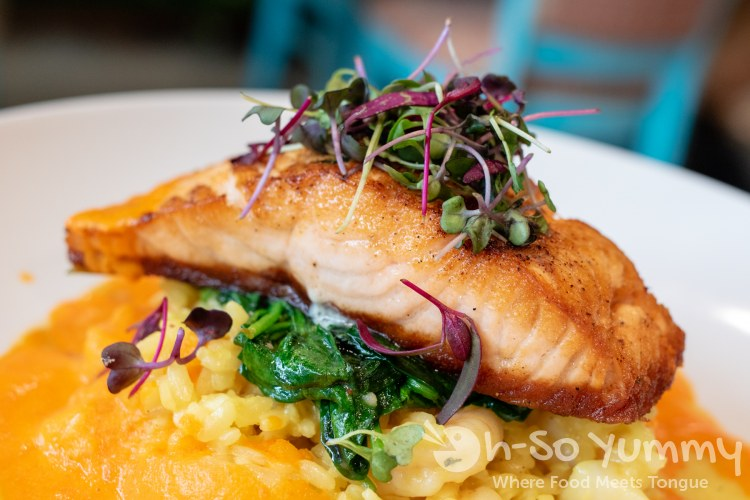 daily catch salmon at Farmer's Table restaurant in Little Italy