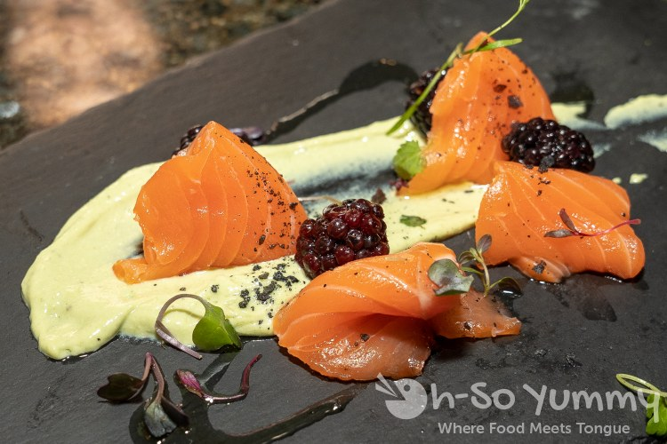 Salmon and Taragon and Blackberry at Wrench and Rodent in Oceanside